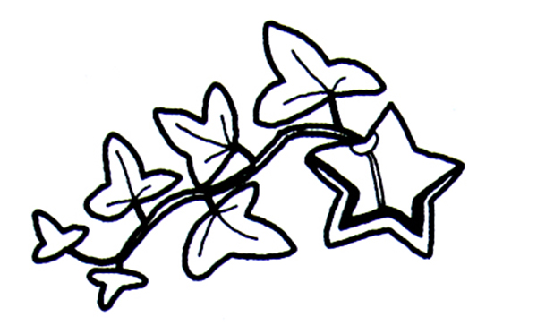 树叶简笔画,高清的树叶简笔画图片大全
