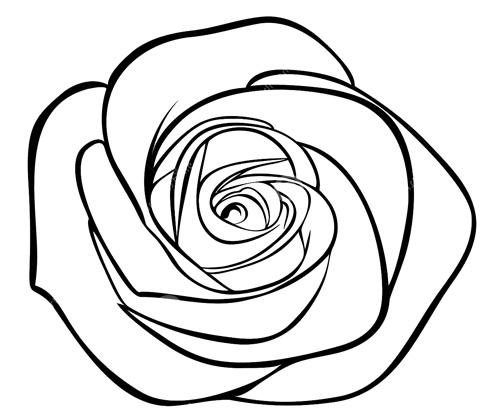 玫瑰花简笔画大全,玫瑰花怎么画 从玫瑰花简笔画学起 简笔画 优宝吧